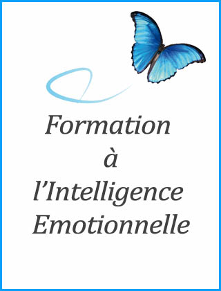 Cour sur intelligence emotionnelle
