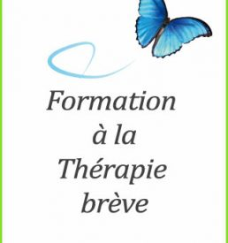 Formation therapie breve